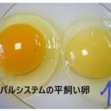 パルシステムの平飼い卵