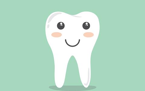 【子どもの歯】虫歯予防に奥歯上下8本をシーラントをしてもらう